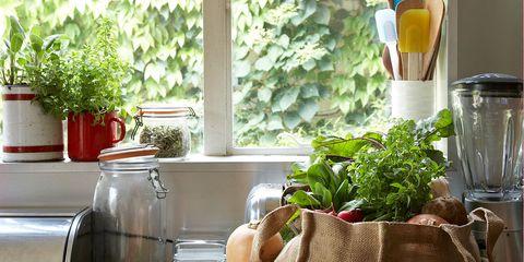 Natural foods, Room, Food, Vegetable, Plant, Brunch, Interior design, Vegan nutrition, Window, Herb,