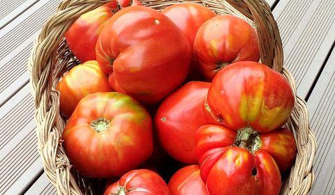 Natural foods, Local food, Vegetable, Whole food, Fruit, Solanum, Tomato, Bush tomato, Food, Plant,