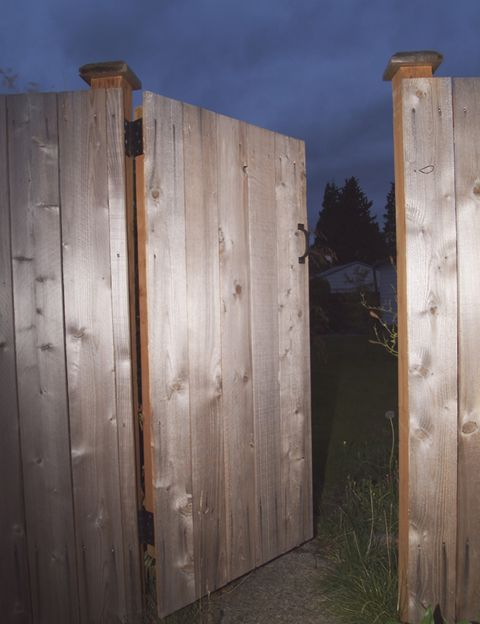 Wood, Hardwood, Wood stain, Composite material, Lumber, Plank, Plywood, Home fencing,