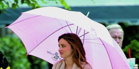 Leg, Umbrella, Sleeve, Flowerpot, Street fashion, Fashion, Thigh, Houseplant, Active pants, Tights,