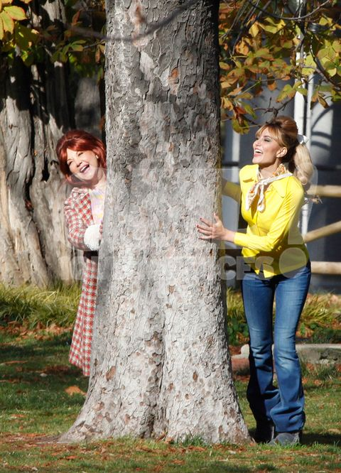 Tree, People in nature, Photograph, Woody plant, Trunk, Yellow, Leaf, Plant, Interaction, Autumn,