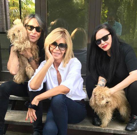 Dog, Canidae, Companion dog, Eyewear, Fur, Sunglasses, Dog walking, Cairn terrier, Carnivore, Dog breed,