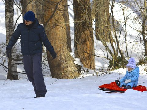 Winter, Recreation, Snow, Mammal, Freezing, People in nature, Outdoor recreation, Sled, Playing in the snow, Baby & toddler clothing,