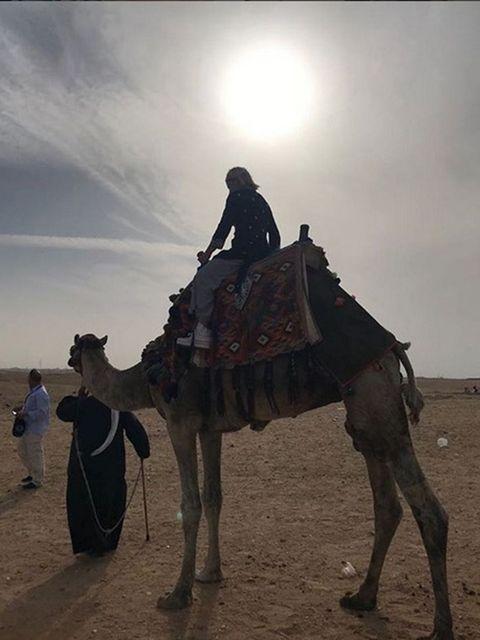 Human, Camel, Natural environment, Camelid, Vertebrate, Standing, Landscape, Aeolian landform, Working animal, Adaptation,