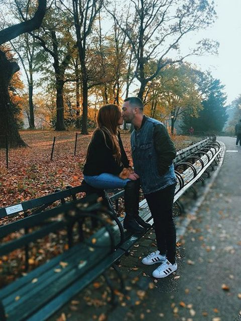 Tree, Leaf, People in nature, Deciduous, Bench, Autumn, Tints and shades, Sunlight, Love, Romance,