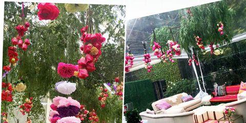 Petal, Flower, Pink, Garden, Home accessories, Shrub, Decoration, Flower Arranging, Floral design, Artificial flower,
