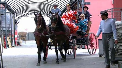 Mode of transport, People, Carriage, Halter, Bridle, Rein, Vertebrate, Horse supplies, Working animal, Horse harness,