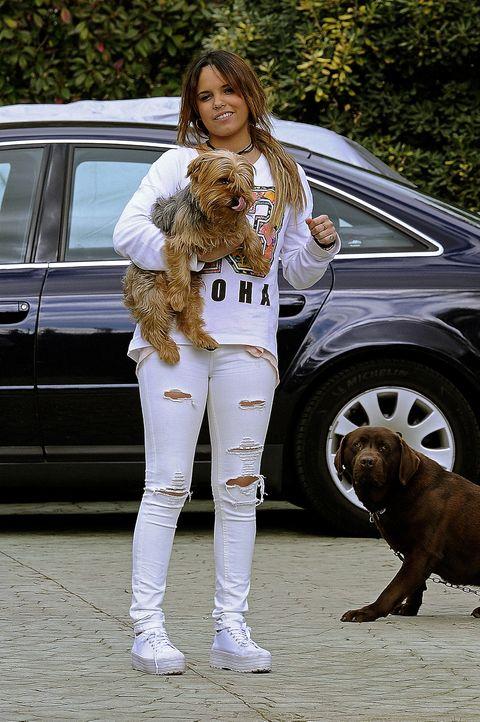 Human, Dog breed, Dog, Carnivore, Vertebrate, Mammal, Vehicle door, Fender, Street fashion, Liver,