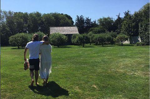 Grass, Lawn, Tree, Land lot, Grass family, Recreation, Summer, Park, Grassland, Plant,