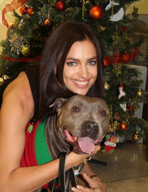 Human, Christmas decoration, Dog, Carnivore, Dog breed, Mammal, Christmas ornament, Holiday, Iris, Christmas eve,