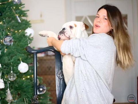 Dog, Christmas decoration, Dog breed, Carnivore, Christmas ornament, Holiday, Christmas tree, Holiday ornament, Interior design, Christmas eve,