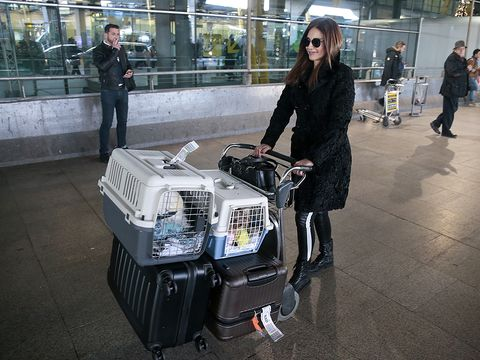 Technology, Street fashion, Machine, Sunglasses, Luggage and bags, Bag, Boot, Goggles, Service, Baggage,