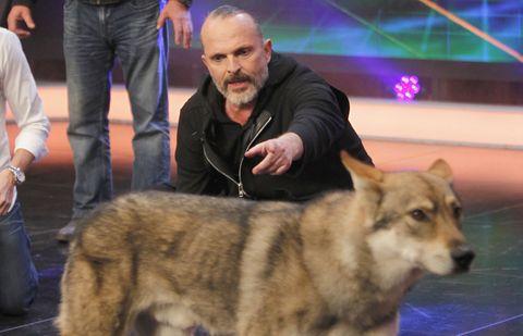 Human, Dog, Jeans, Dog breed, Carnivore, Denim, Beard, Fur, Snout, Canidae,