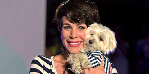 Human, Dog breed, Dog, Carnivore, Vertebrate, Mammal, Toy dog, Companion dog, Maltepoo, Puppy,