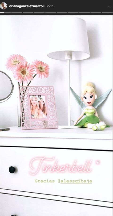 Pink, Lampshade, Petal, Peach, Toy, Lighting accessory, Lamp, Interior design, Light fixture, Fictional character,