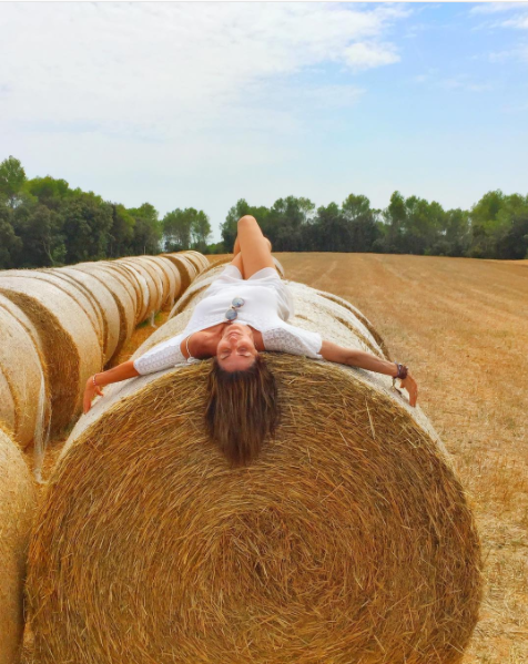 Hay, Straw, Field, Pumpkin, Grass family, Grass, Plant, Farm, Rural area, Harvest,