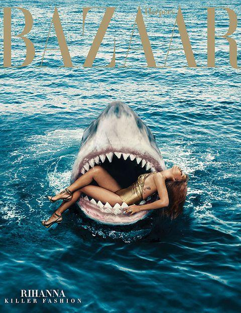 Organism, Vertebrate, Tooth, Lamniformes, Lamnidae, Cartilaginous fish, Liquid, Jaw, Adaptation, Shark,