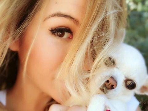 Lip, Skin, Eyebrow, Eyelash, Carnivore, Iris, Beauty, Dog breed, Organ, Dog,