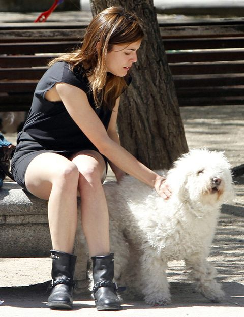 Leg, Dog, Dog breed, Shoe, Carnivore, Boot, Street fashion, Knee, Companion dog, Long hair,
