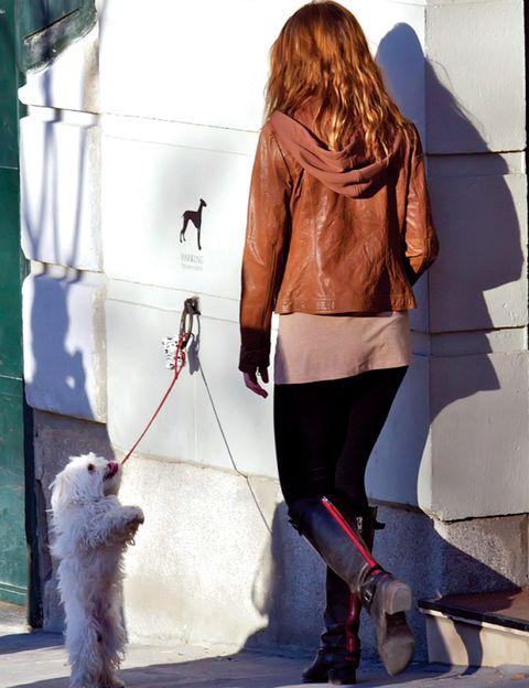 Sleeve, Textile, Outerwear, Mammal, Dog breed, Dog, Street fashion, Jacket, Carnivore, Knee,