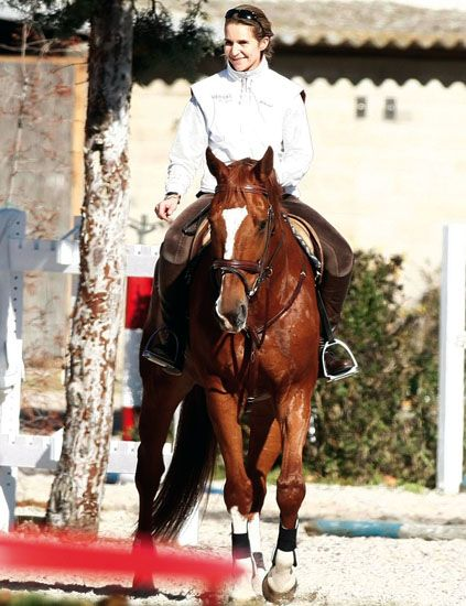 Human, Halter, Bridle, Horse, Horse tack, Horse supplies, Rein, Saddle, Animal sports, Equestrianism,