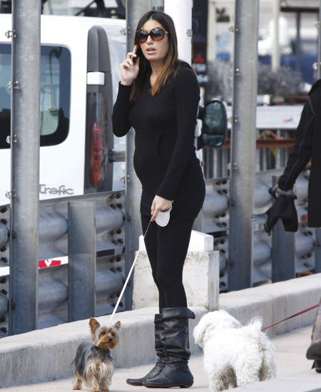 Dog breed, Dog, Carnivore, Outerwear, Mammal, Style, Street fashion, Sunglasses, Goggles, Terrier,