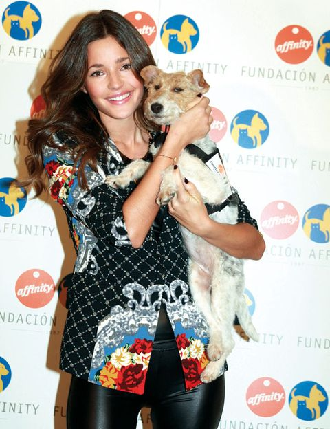 Dog breed, Vertebrate, Dog, Carnivore, Puppy, Logo, Toy dog, Tights, Companion dog, Blond,