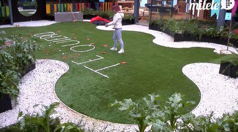 Grass, Garden, Lawn, Shrub, Yard, Groundcover, Walkway, Games, Landscaping, Play,