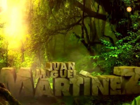 Green, Nature, Vegetation, Jungle, Natural environment, Forest, Light, Woodland, Lighting, Sunlight,