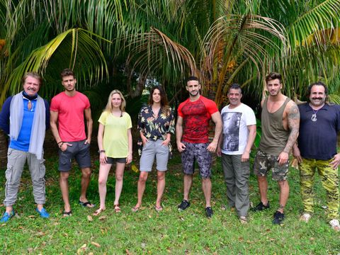 Social group, Youth, Botany, Tree, Arecales, Palm tree, Fun, Plant, Leisure, Team,