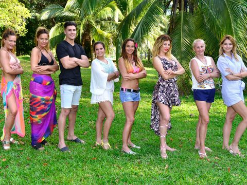 Fun, People, Social group, Leisure, People in nature, Summer, Shorts, Woody plant, Vacation, Arecales,