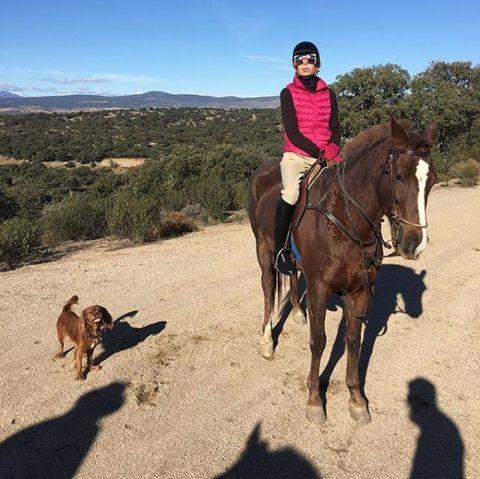Horse, Trail riding, Equestrianism, Animal sports, Outdoor recreation, Rein, Equestrian sport, Recreation, Wilderness, Ranch,