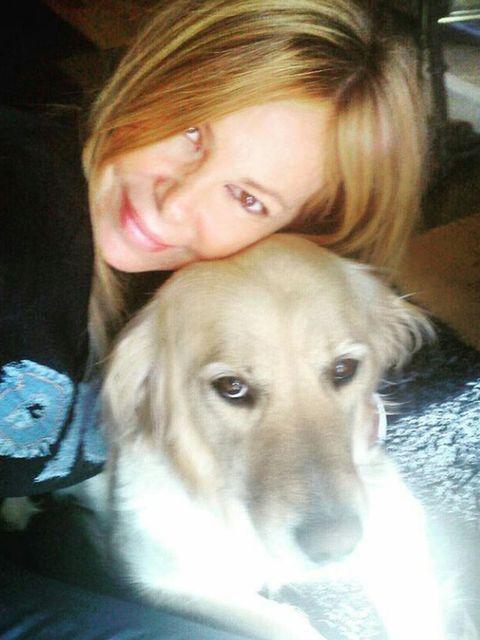 Hair, Dog breed, Dog, Carnivore, Iris, Working animal, Companion dog, Blond, Eyelash, Brown hair,