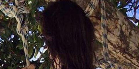 Nature, Brown, Hairstyle, Leaf, Summer, Woody plant, Beauty, Black, Black hair, Long hair,