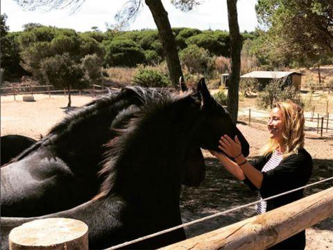 Horse, Mammal, Vertebrate, Mane, Stallion, Ranch, Mare, Mustang horse, Livestock, Landscape,