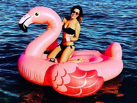 Flamingo, Pink, Inflatable, Water bird, Bird, Fun, Stomach, Recreation, Leisure, Greater flamingo,