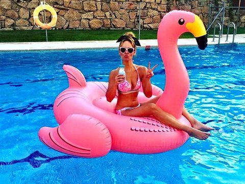 Inflatable, Swimming pool, Leisure, Pink, Games, Fun, Recreation, Water bird, Flamingo, Bird,