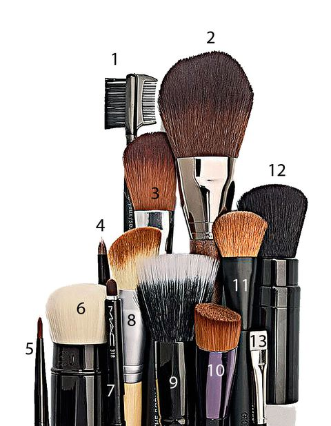 Brush, Musical instrument accessory, Household supply, Makeup brushes, Illustration, Drawing, Paint brush, Personal care, Household cleaning supply,