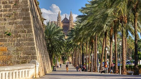 Arecales, Pedestrian, Thoroughfare, Spire, Palm tree, Medieval architecture, Tourist attraction, Walkway, Walking, Place of worship,