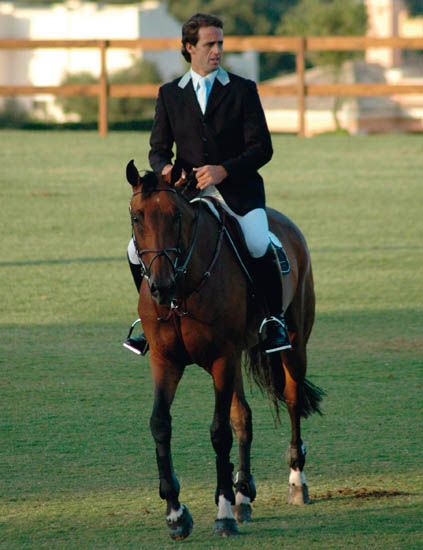 Human, Halter, Bridle, Horse supplies, Rein, Horse, Vertebrate, Horse tack, Saddle, Equestrian sport,