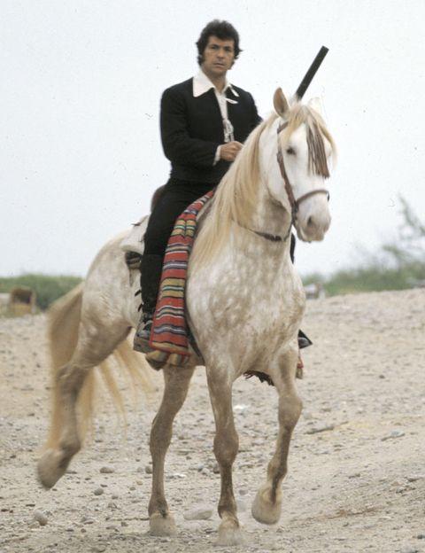 Human, Halter, Bridle, Horse, Mammal, Horse tack, Working animal, Soil, Horse supplies, Rein,