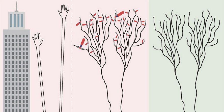 El cerebro aprende de un modo distinto del que creíamos