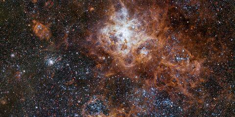 Donde nacen las estrellas