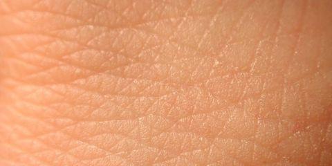Resultado de imagen de piel