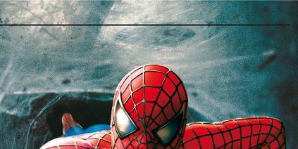 Qu 233 Ara 241 A Mordi 243 A Spiderman