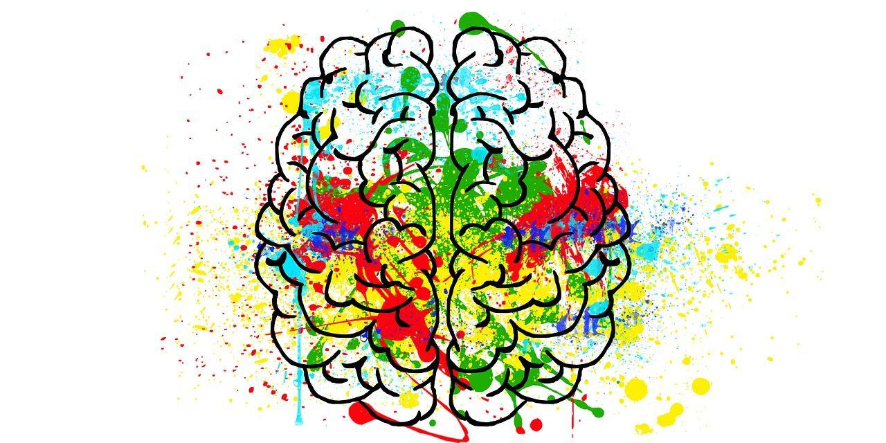 Descubren una nueva manera en que el cerebro almacena recuerdos