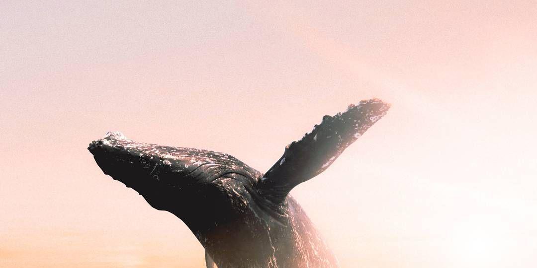 Impresionantes imágenes surrealistas que te transportarán a otro planeta