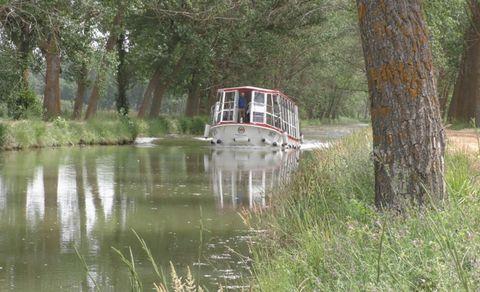 Water transportation, Waterway, Vehicle, Canal, Bank, Bayou, Tree, Boat,