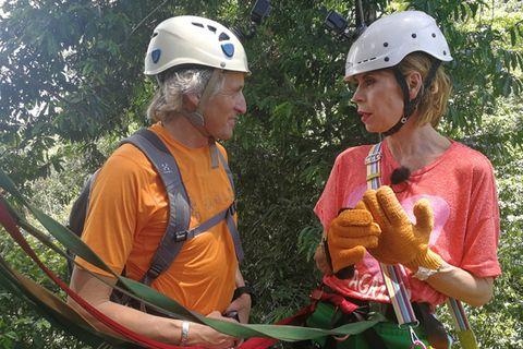 Hard hat, Recreation, Adventure, Tree, Headgear, Adaptation, Personal protective equipment, Jungle, Fashion accessory, Arborist,