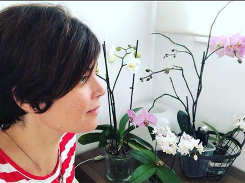 Flower, Plant, Flowering plant, Houseplant, Floral design, Floristry, Flower Arranging, Ikebana, Flowerpot, Art,